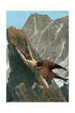 Prometheus Bound to the Rock Giclee Print