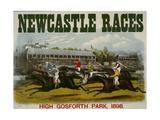 Newcastle Races Giclee Print