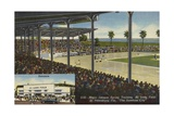 Spring Training at Al Lang Field Giclee Print