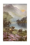 Scene of Countryside in Scotland Giclee Print