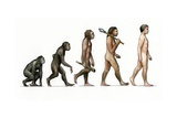 Evolution of Man Giclee Print