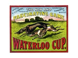 Waterloo Cup Game Giclee Print