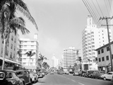 Collins Avenue from the South Photographic Print