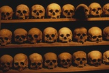 Shelves of Monk Skulls at Great Meteoron Ossuary Photographic Print by Paul Souders