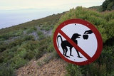Sign Reminding Not to Feed the Baboons Photographic Print by Paul Souders