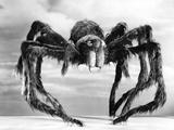 Giant Replica from the Movie Tarantula Photographic Print