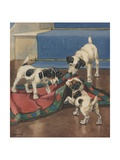 Dogs Playing with Rug Giclee Print