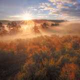 Sun and Fog at Hayden Valley (Square) Photographic Print by Vincent James