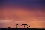 Masai Mara National Reserve at Dusk Photographic Print by Paul Souders