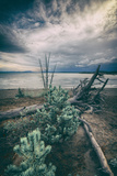 Moody Lakeside Storm, Yellowstone Photographic Print by Vincent James