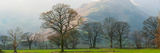 Autumn Trees with Mountain in the Background, Langdale, Lake District National Park, Cumbria Photographic Print