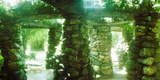 Stone Canopy in the Botanical Garden, Jardim Botanico, Zona Sul, Rio De Janeiro, Brazil Photographic Print