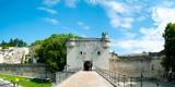 Bridge Leading to the City Gate, Pont Saint-Benezet, Rhone River, Avignon, Vaucluse Photographic Print
