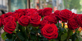 Close-Up of Red Roses in a Bouquet During Sant Jordi Festival, Barcelona, Catalonia, Spain Photographic Print