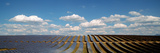 Solar Panels in a Field, Provence-Alpes-Cote D'Azur, France Photographic Print