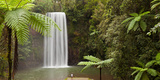 Waterfall in a Forest, Millaa Millaa Falls, Atherton Tableland, Queensland, Australia Photographic Print