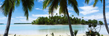 Palm Trees on the Beach, Rangiroa Atoll, French Polynesia Photographic Print