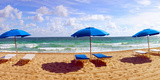 Lounge Chairs and Beach Umbrellas on the Beach, Fort Lauderdale Beach, Florida, USA Photographic Print