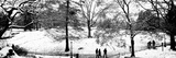 High Angle View of a Group of People in a Park, Central Park, Manhattan, New York City Photographic Print