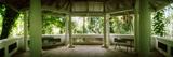 Canopy in the Botanical Garden, Jardim Botanico, Zona Sul, Rio De Janeiro, Brazil Photographic Print