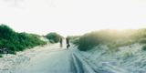 Rear View of a Couple Cycling Along a Beach Trail, Fort Tilden, Queens, New York City Photographic Print