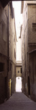 Narrow Alley with Old Buildings, Siena, Siena Province, Tuscany, Italy Photographic Print
