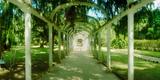Pathway in a Botanical Garden, Jardim Botanico, Zona Sul, Rio De Janeiro, Brazil Photographic Print