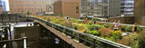 Tourists in an Elevated Park, High Line, Manhattan, New York City, New York State, USA Photographic Print