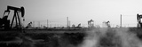 Oil Drills in a Field, Maricopa, Kern County, California, USA Fotografisk tryk