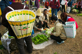 People Buying Vegetables at a Traditional Town Market, Xizhou, Erhai Hu Lake Area Photographic Print by Green Light Collection