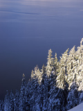 Snow Covered Trees at South Rim, Crater Lake National Park, Oregon, USA Photographic Print by Green Light Collection