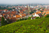 City Viewed from Vineyard, Esslingen-Am-Neckar, Baden-Wurttemberg, Germany Photographic Print by Green Light Collection