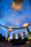 Elevated Walkway at Gardens by the Bay, Singapore Photographic Print by Green Light Collection
