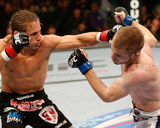 UFC on FOX: Dec 14, 2013 - Urijah Faber vs Michael McDonald Photo by Josh Hedges