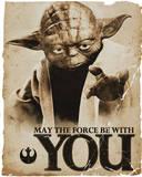 Star Wars - Yoda Force Reprodukcje
