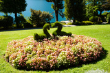 Topiary and Flower Bed in a Garden, Villa Carlotta, Tremezzo, Como, Lombardy, Italy Photographic Print by Green Light Collection