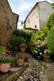 Flowers Pots on Street, Lacoste, Vaucluse, Provence-Alpes-Cote D'Azur, France Photographic Print by Green Light Collection