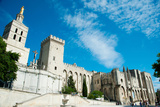 Cathedrale Notre-Dame Des Doms D'Avignon, Palais Des Papes, Avignon, Vaucluse Photographic Print by Green Light Collection