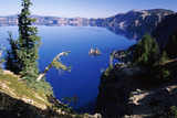 Red Elderberry (Sambucus Racemosa) with Phantom Ship Island in Crater Lake Photographic Print by Green Light Collection