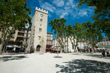 Buildings in a Town, Place Saint-Jean Le Vieux, Avignon, Vaucluse, Provence-Alpes-Cote D'Azur Photographic Print by Green Light Collection