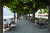 People Sitting on Benches Among Trees at Lakeshore, Lake Como, Cernobbio, Lombardy, Italy Photographic Print by Green Light Collection