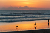 Silhouette of People and Dog Walking on the Beach, Seminyak, Kuta, Bali, Indonesia Reproduction photographique par Green Light Collection