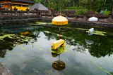 Covered Stones with Umbrella in Ritual Pool at Holy Spring Temple, Tirta Empul Temple Photographic Print by Green Light Collection