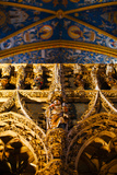 Interiors of Cathedrale Sainte-Cecile, Albi, Tarn, Midi-Pyrenees, France Photographic Print by Green Light Collection