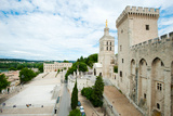Palace in a City, Musee Du Petit Palais, Notre-Dame Des Domes, Le Palais Des Papes Photographic Print by Green Light Collection