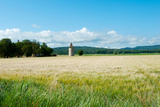 Wheat Field with a Tower, Meyrargues, Bouches-Du-Rhone, Provence-Alpes-Cote D'Azur, France Photographic Print by Green Light Collection
