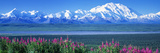 Mountains and Lake Denali National Park Ak USA Photographic Print