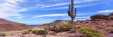 Saguaro Cactus in Arid Area, El Embudo, Isla Partida, La Paz, Baja California Sur, Mexico Reproduction photographique