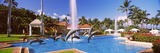 Dolphin Sculptures in a Pool, Grand Wailea Resort Hotel and Spa, Maui, Hawaii, USA Photographic Print