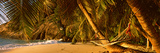 Hammock Between Two Palm Trees, Seychelles Photographic Print